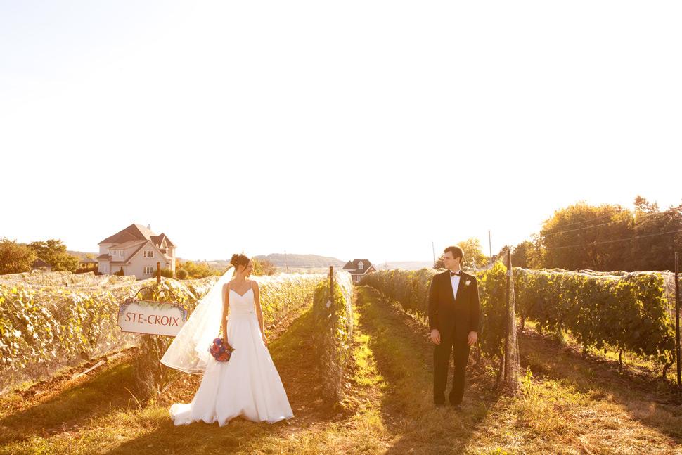 Couple dans un vignoble