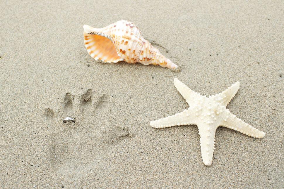 Empreinte de la main de la mariée sur la plage avec sa bague