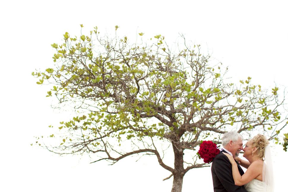Mariés face à face en dessous d'un arbre.