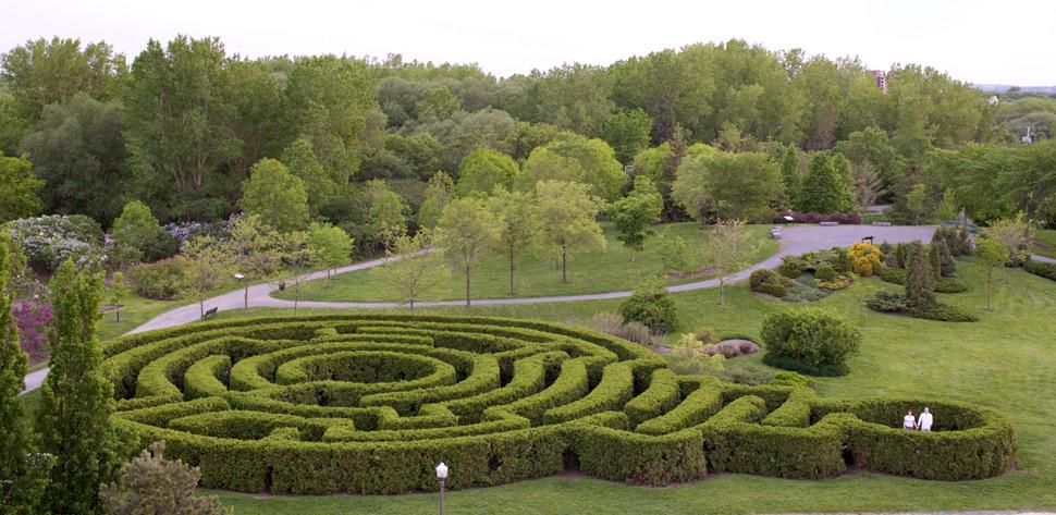 Couple dans un labyrinthe végétal